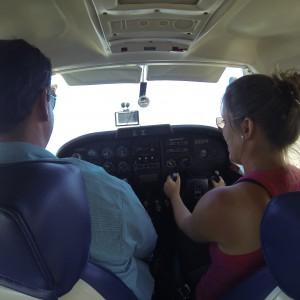 Pantanal vliegen