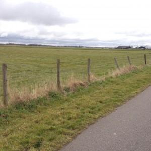 hardlopen polder