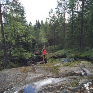 Hovfjället Zweden